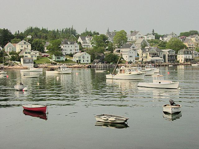 Web-Cam Stonington Harbor in Stonington, Maine