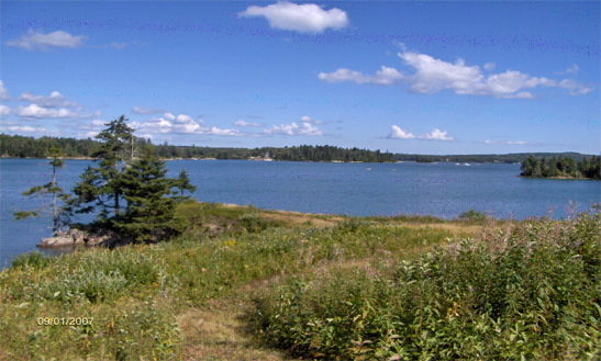 Island view waterfront lot - 3.49 acres Oceanfront - 271 feet of shoreline - Open field setting with gently rolling and sloping land 360 degrees of scenic views