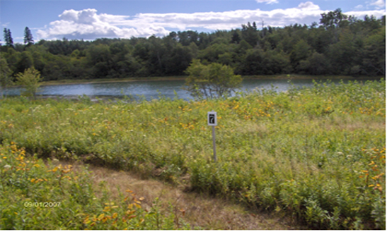 Waterfront Lot on the shore at Dyer Harbor - Steuben Maine - Mill offers an open, rolling field that gently meets the shore. 