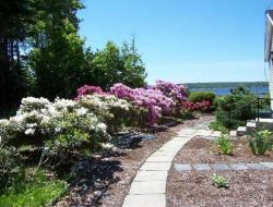 Real Estate Listing - Belfast, Maine - Perfectly lovely in-town home on generous lot w/private backyard