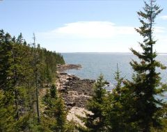 Maine oceanfront location with ocean views and crashing waves