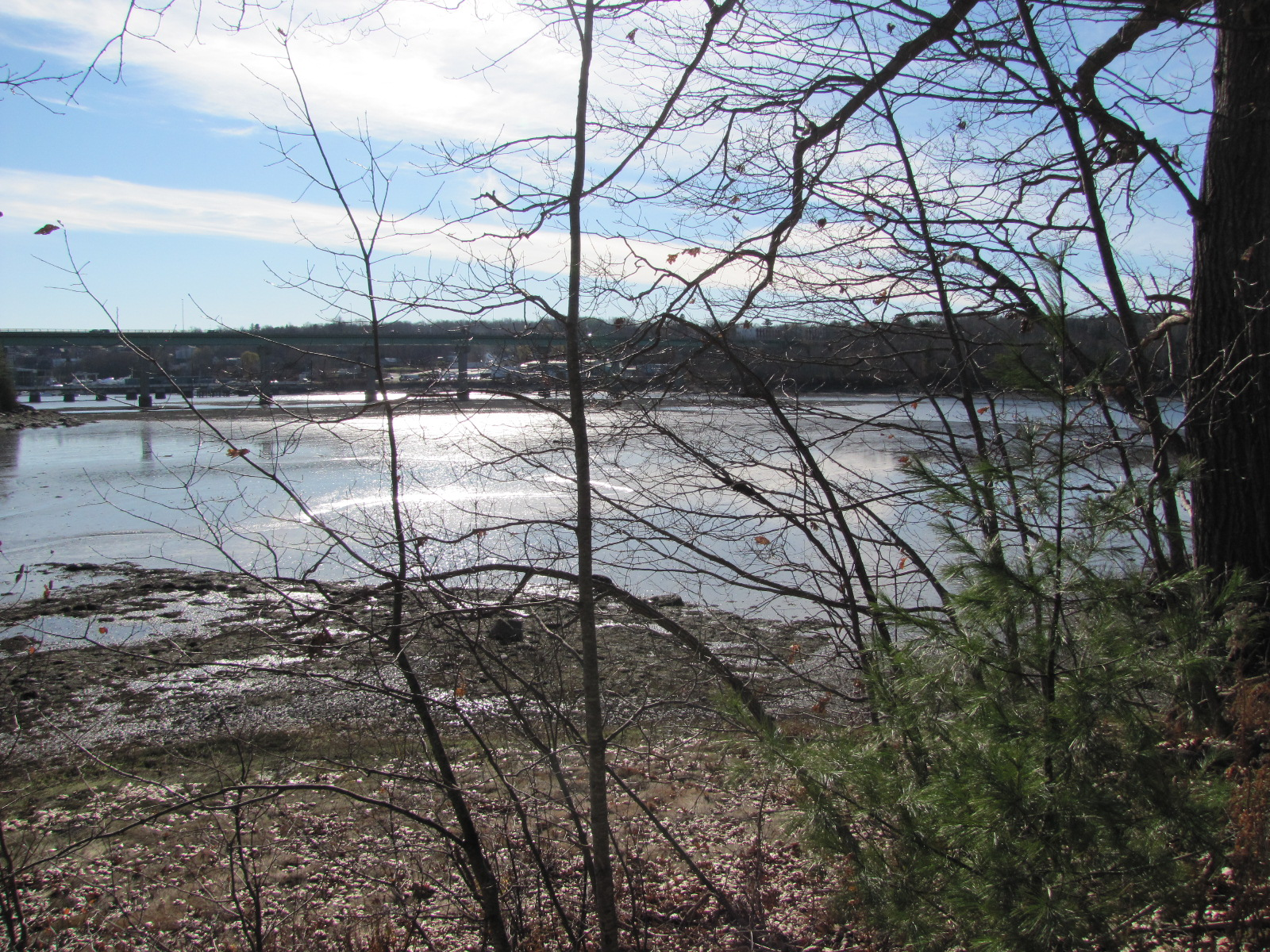 Oceanfront, Waterfront, Water Views Waterfront Lot with Access to Penobscot Bay